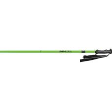 Ski Poles Masters THE REBEL green